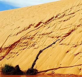 A caminho das dunas