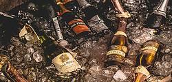 Vinícolas: na rota dos brindes