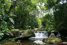 Trecho do rio com pequena queda