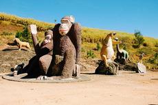 Escultura Gigante de Animais:  O Hotel Vale do Sol possui um local com esculturas gigantes de animais. Um local ideal para tirar uma Self e enviar aos seus amigos!