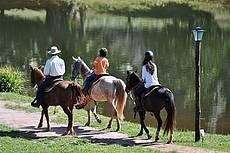Passeio a cavalo. Atividade tranquila e monitorada, cujo roteiro de visita inclui os laranjais que cercam nossa fazenda.