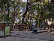 Trilha no Bosque