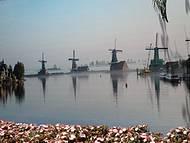 Painel em homenagem à Holanda