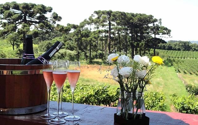 48 horas nas vinícolas da Serra Gaúcha
