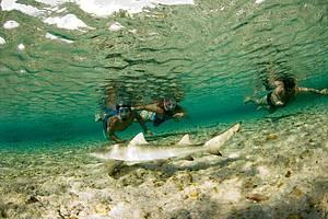 Snorkeling na Praia do Atalaia