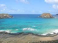 A primeira parada do Ilhatour onde a vida marinha é muito presente
