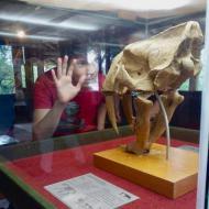 Museu Univale encanta a molecada