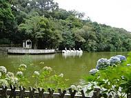 Lago da Aldeia do Imigrante