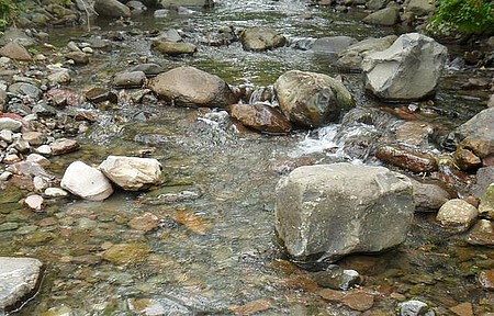 Rio da Vaca - Rio de água cristalina.