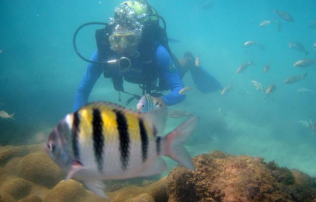Mergulho com cilindro em Maracajaú