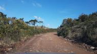 Estradas que levam aos parques têm boa conservação