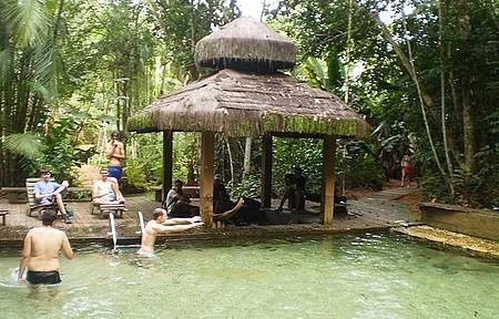 Jardim da Amazonia - Melhor da Natureza