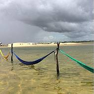 Redes na água