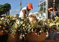 Pescadores capricham nas flores