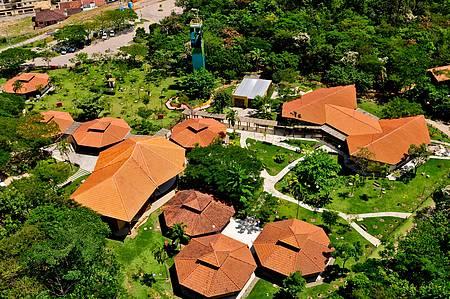 Parque Botânico Vale - 33 hectares de muito verde!