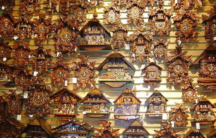 Cucos tomam conta das paredes da loja