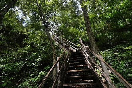 Dolina da Água Milagrosa - Escadaria que leva à dolina exige esforço