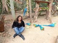 Interagindo com as Aves