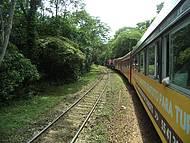 Trem Curitiba/morretes