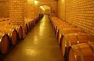 Não deixe de vistar o Vale dos Vinhedo. Assim são armazenados os vinhos.