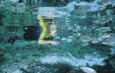 Flutuação - Baía Bonita é um dos melhores locais para a prática da atividade