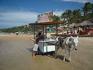 Paisagem t�pica de Lagoinha - Jegue Bar