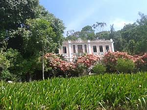 Fazenda Vila Rosa