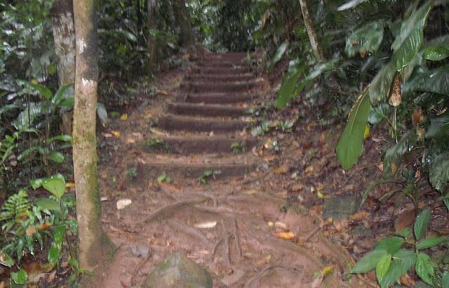 Na trilha da Cachoeira dos 3 Tombos