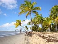 Coqueiros Praia e Mar
