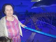 O esqueleto de uma orca