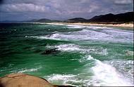 Praia da Joaquina é a preferida dos surfistas