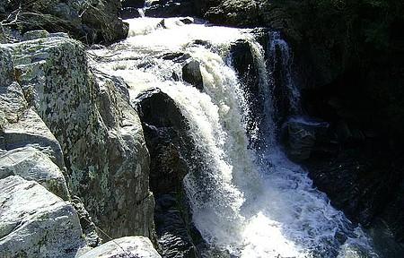Colônia Maciel - Cachoeira do Imigrante - Uma beleza escondida na mata