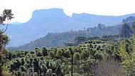 Vista da Pedra do Baú,lado de Campos