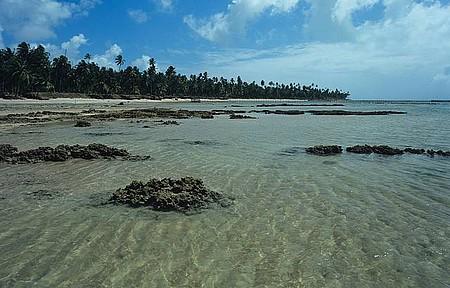 Barra de Santo Antônio - Piscinas perfeitas
