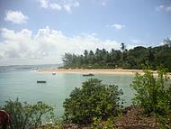 Ilha de Sto Aleixo, Foi Perfeito!