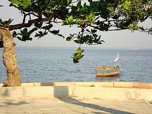 Praia de Piedade: Bucolismo às margens da Baía de Guanabara<br>