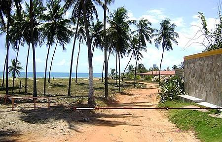 Lagoa do Pau - Praia da Lagoa