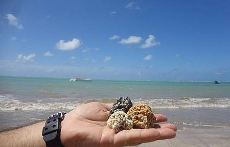 Praia da Ponta da Campina - Mar Geralmente Calmo