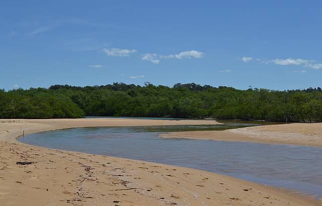Rio chegando em Tabuba, destaque para o manguezal ao fundo...