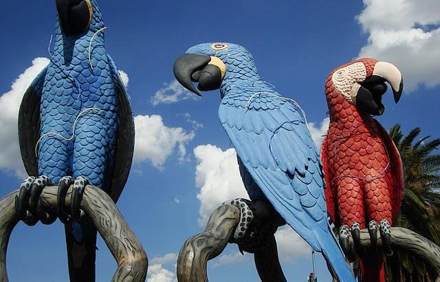 Praça das Araras