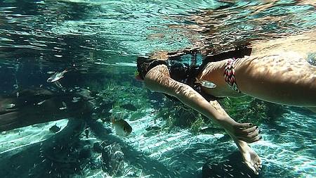Vila Bom Jardim - Mergulho em águas cristalinas
