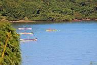 Paisagem típica do norte da Ilha de Florianópolis