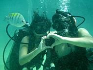 Mergulho com Cilindro - Maravilhoso!