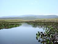 Pantanal da Chapada Diamantina. Nem parece de verdade.