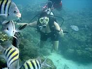 Fotos da equipe de mergulho