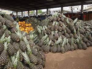 Mercado Municipal: Belo visual e aroma de frutas frescas<br>