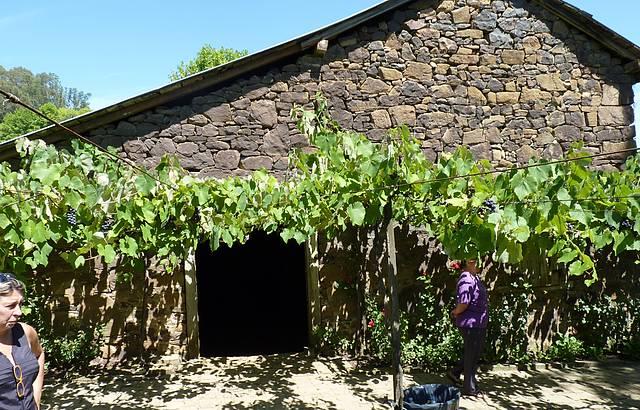 Casa de pedra - Cantina Strapazzon