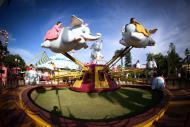Baby Elefante: adrenalina para os pequenininhos!