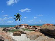 Praia do coqueiro solitário
