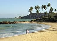 Praia virgem tem coqueirais e fal�sias